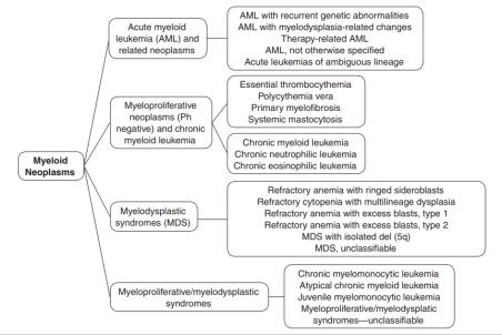myeloid