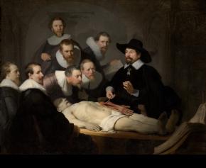 EN Rembrandt Tulp