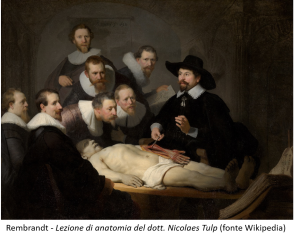 IT Rembrandt Tulp